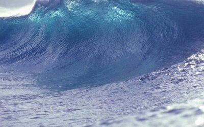 Wees voorbereid op de komende tsunami van innovatie